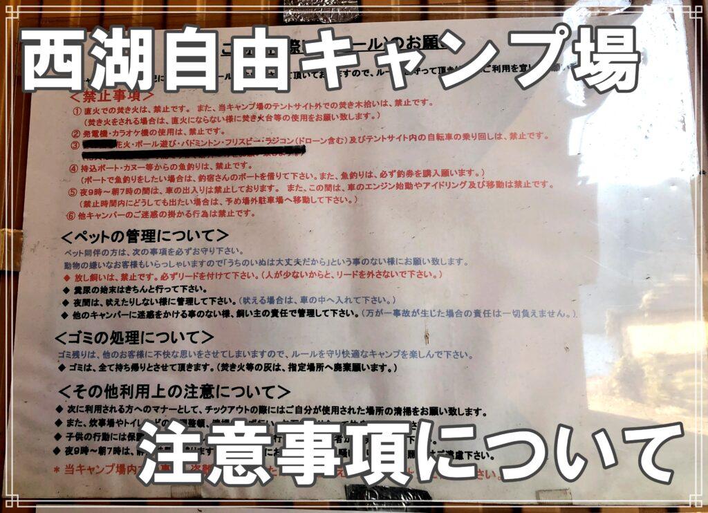 精進湖自由キャンプ場注意事項について