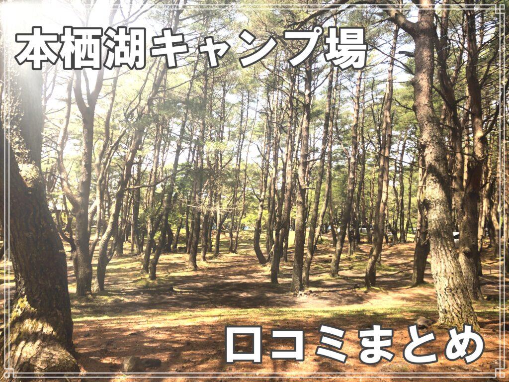 本栖湖キャンプ場口コミ